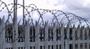 palisade fencing with razor wire